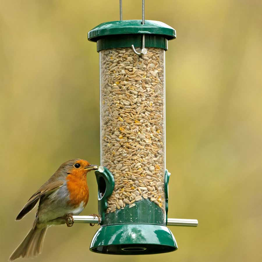 bird-feeders-for-birds-in-india