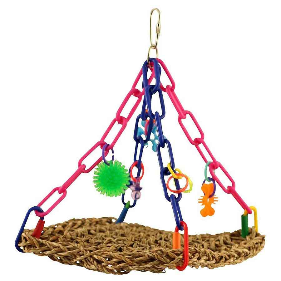 parrot-breeding-toys-treats-in-kolkata